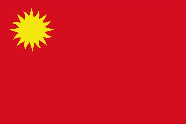 Imagen de Bandera común chica