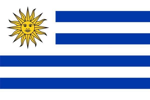 Imagen de Bandera común grande, URUGUAY