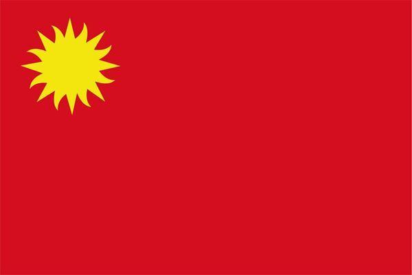 Imagen de Bandera común grande