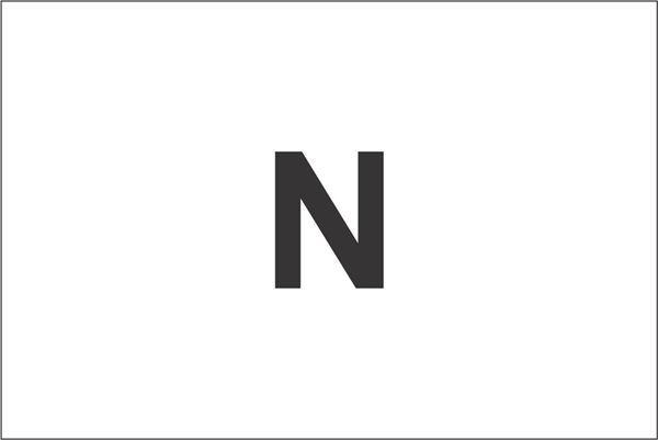 Imagen de Bandera común grande, NC